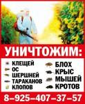 Домашний СЭС-Балашиха