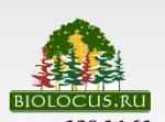 Питомник деревьев крупномеров Биолокус