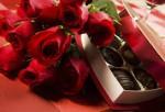 Розы цветы оптом, свежесрезанные розы, цветы из Эквадора