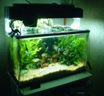 Как сделать аквариум самостоятельно