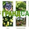 Питомник саженцев,  растений и деревьев грандсад
